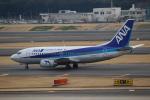 ハピネスさんが、成田国際空港で撮影したANAウイングス 737-54Kの航空フォト(写真)