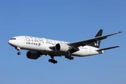 TRdenさんが、成田国際空港で撮影したユナイテッド航空 777-224/ERの航空フォト(写真)