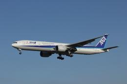 TRdenさんが、成田国際空港で撮影した全日空 777-381/ERの航空フォト(写真)