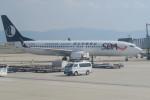 職業旅人さんが、関西国際空港で撮影した山東航空 737-85Nの航空フォト(写真)