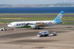 たぬきぽんぽんさんが、羽田空港で撮影したAIR DO 767-381の航空フォト(写真)