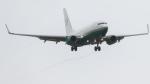 うみBOSEさんが、新千歳空港で撮影したAVNエア 737-7BC BBJの航空フォト(写真)