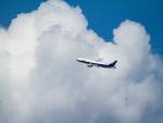 Mame @ TYOさんが、伊丹空港で撮影した全日空 777-281の航空フォト(写真)