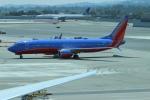 uhfxさんが、サンフランシスコ国際空港で撮影したサウスウェスト航空 737-8H4の航空フォト(写真)