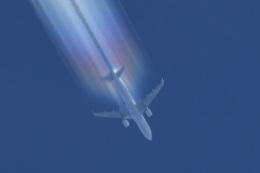 Astechnoさんが、関西国際空港で撮影した春秋航空 A320-214の航空フォト(飛行機 写真・画像)