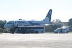 職業旅人さんが、ハバロフスク・ノーヴイ空港で撮影したオーロラ A319-111の航空フォト(写真)