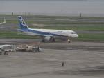 名無しの権兵衛さんが、羽田空港で撮影した全日空 A320-211の航空フォト(写真)