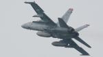オキシドールさんが、岩国空港で撮影したアメリカ海兵隊 F/A-18C Hornetの航空フォト(写真)