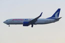 PASSENGERさんが、フランクフルト国際空港で撮影したアナドルジェット 737-8F2の航空フォト(飛行機 写真・画像)