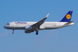 PASSENGERさんが、フランクフルト国際空港で撮影したルフトハンザドイツ航空 A320-214の航空フォト(飛行機 写真・画像)