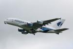 VEZEL 1500Xさんが、成田国際空港で撮影したマレーシア航空 A380-841の航空フォト(写真)