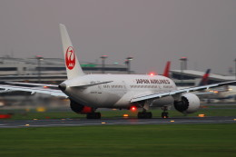 AKさんが、成田国際空港で撮影した日本航空 787-8 Dreamlinerの航空フォト(飛行機 写真・画像)