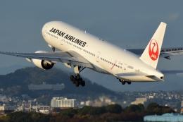 雪虫さんが、伊丹空港で撮影した日本航空 777-246の航空フォト(飛行機 写真・画像)
