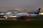 ぷぅぷぅまるさんが、伊丹空港で撮影した全日空 767-381/ERの航空フォト(写真)