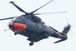 isiさんが、厚木飛行場で撮影した海上自衛隊 CH-101の航空フォト(写真)
