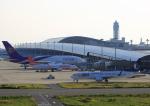 タミーさんが、関西国際空港で撮影した山東航空 737-85Nの航空フォト(写真)