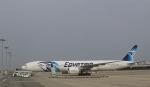 Take51さんが、関西国際空港で撮影したエジプト航空 777-36N/ERの航空フォト(写真)