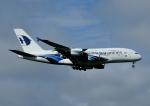 じーく。さんが、成田国際空港で撮影したマレーシア航空 A380-841の航空フォト(飛行機 写真・画像)