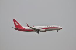 tupolevさんが、羽田空港で撮影した上海航空 737-89Pの航空フォト(写真)