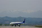 SKYLINEさんが、仙台空港で撮影した全日空 A320-211の航空フォト(写真)