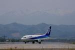 SKYLINEさんが、仙台空港で撮影したエアーネクスト 737-54Kの航空フォト(写真)
