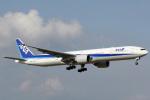 A-Chanさんが、成田国際空港で撮影した全日空 777-381/ERの航空フォト(写真)