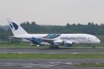 JA882Aさんが、成田国際空港で撮影したマレーシア航空 A380-841の航空フォト(写真)