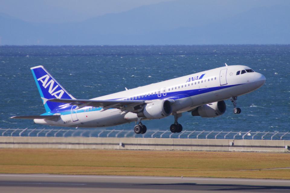 yabyanさんの全日空 Airbus A320 (JA8385) 航空フォト