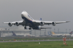 EF66901さんが、成田国際空港で撮影した日本貨物航空 747-8KZF/SCDの航空フォト(写真)