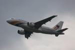 みるぽんたさんが、関西国際空港で撮影したミャンマー国際航空 A319-111の航空フォト(写真)
