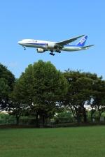 jinopekoさんが、福岡空港で撮影した全日空 777-281の航空フォト(写真)