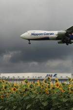 hnd22さんが、成田国際空港で撮影した日本貨物航空 747-8KZF/SCDの航空フォト(写真)
