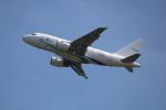 水月さんが、関西国際空港で撮影したGCLポリー・エナジー・ホールディングス A318-112 CJ Eliteの航空フォト(写真)