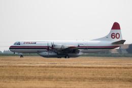 チャッピー・シミズさんが、アボッツフォード国際空港で撮影したコンエア・アヴィエーション L-188 Electraの航空フォト(飛行機 写真・画像)