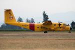 チャッピー・シミズさんが、アボッツフォード国際空港で撮影したカナダ軍 CC-115 Buffaloの航空フォト(写真)
