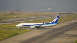 てつさんが、関西国際空港で撮影した全日空 737-881の航空フォト(飛行機 写真・画像)