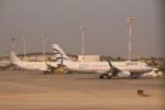 だいすけさんが、ベン・グリオン国際空港で撮影したエーゲ航空 A320-232の航空フォト(写真)