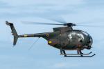 TBさんが、館山航空基地で撮影した陸上自衛隊 OH-6Dの航空フォト(写真)