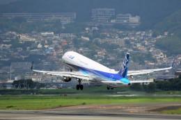 ニンバスT.Iさんが、伊丹空港で撮影した全日空 A321-211の航空フォト(飛行機 写真・画像)
