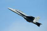 うめやしきさんが、厚木飛行場で撮影したアメリカ海兵隊 F/A-18D Hornetの航空フォト(飛行機 写真・画像)