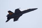 チャッピー・シミズさんが、アボッツフォード国際空港で撮影したアメリカ海軍 F/A-18E Super Hornetの航空フォト(写真)