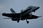 チャッピー・シミズさんが、厚木飛行場で撮影したアメリカ海軍 F/A-18D Hornetの航空フォト(写真)