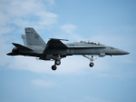 チャッピー・シミズさんが、厚木飛行場で撮影したアメリカ海軍 F/A-18D Hornetの航空フォト(飛行機 写真・画像)