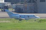 yabyanさんが、中部国際空港で撮影した航空自衛隊 U-125A(Hawker 800)の航空フォト(飛行機 写真・画像)