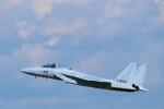yabyanさんが、名古屋飛行場で撮影した航空自衛隊 F-15J Eagleの航空フォト(写真)