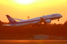 Tomo_lgmさんが、成田国際空港で撮影した全日空 787-9の航空フォト(写真)