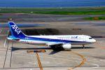 まいけるさんが、羽田空港で撮影した全日空 A320-211の航空フォト(写真)