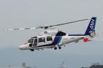 yabyanさんが、中部国際空港で撮影したオールニッポンヘリコプター AS365N3 Dauphin 2の航空フォト(飛行機 写真・画像)