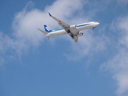 B747_ahさんが、新千歳空港で撮影した全日空 737-881の航空フォト(飛行機 写真・画像)