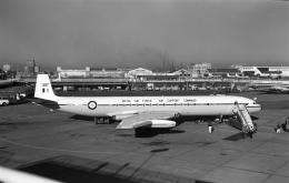 ノビタ君さんが、羽田空港で撮影したイギリス空軍 DH.106 Cometの航空フォト(飛行機 写真・画像)